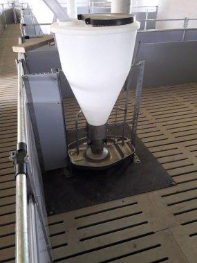 Automat paszowy 4